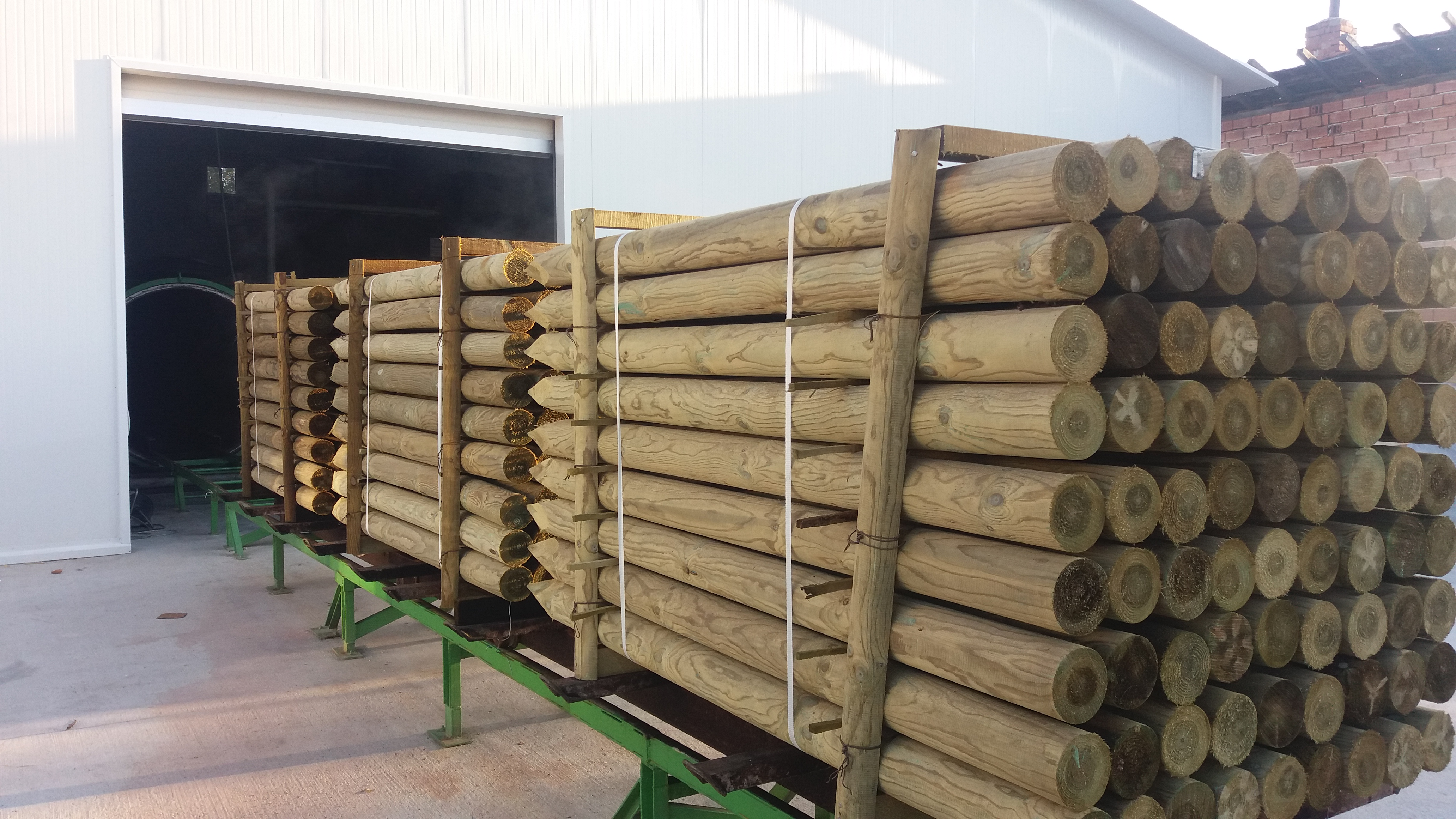 Pressure-treated timber: vine stakes