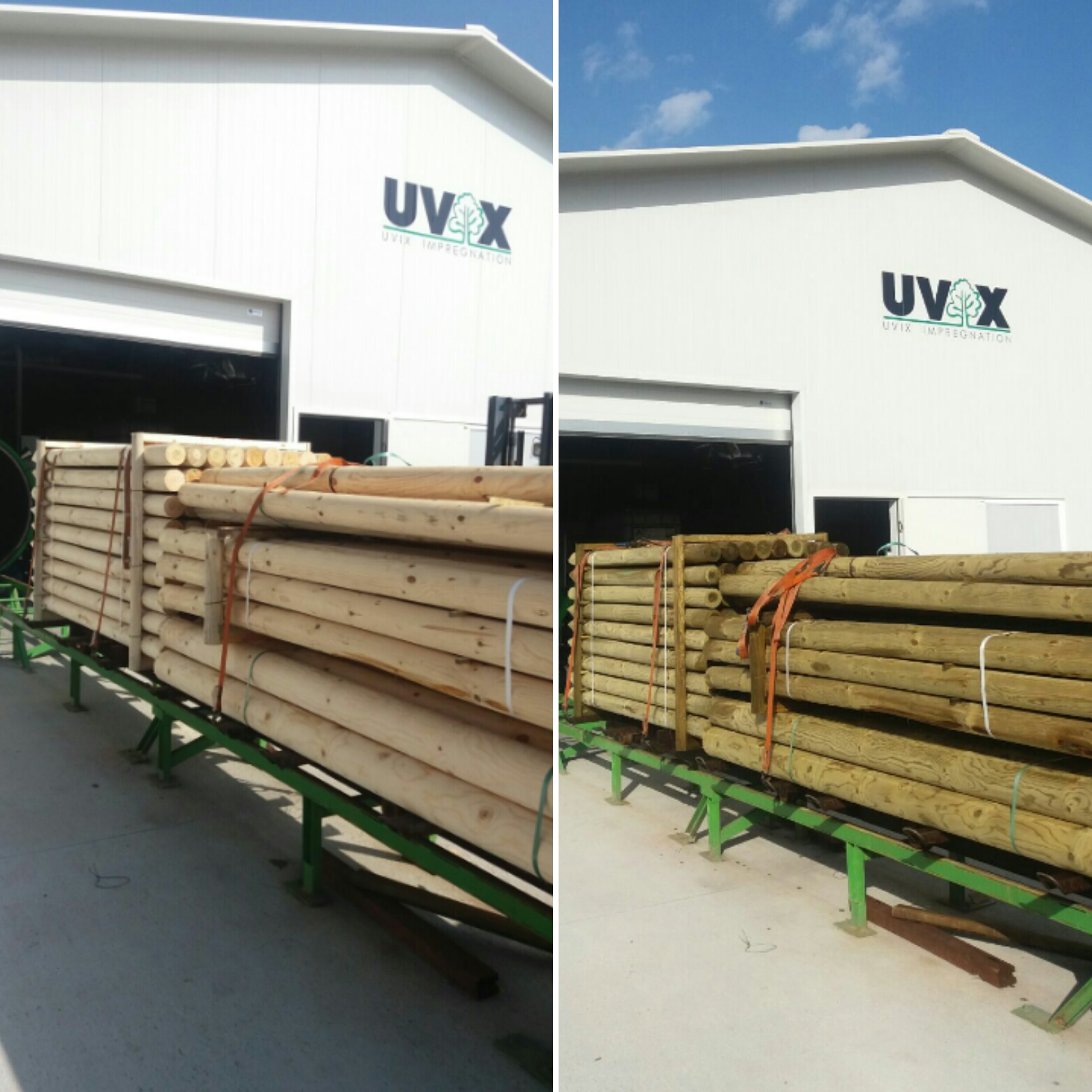 Pressure-treated timber